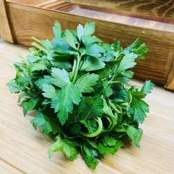 Herbs- Italian Parsley (1 pack)