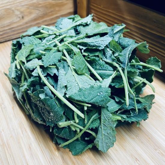 Baby Kale  32fl/oz