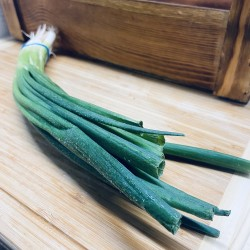 Green Onions (1pack)