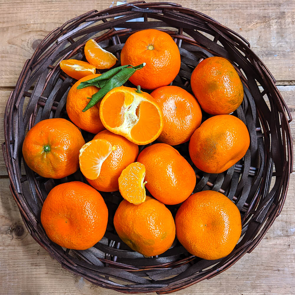 Clementines (1lb)