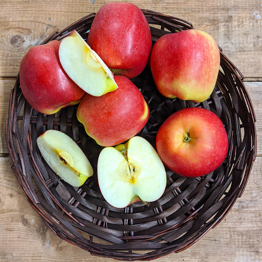 Ambrosia Apples (1lb)