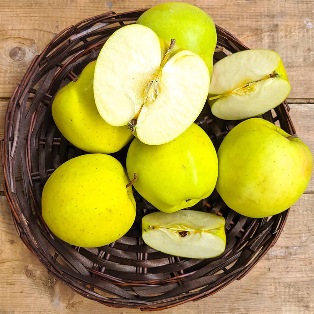 Mutsu Apples (1lb)